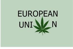 Polska prezydencja: narkotyki - a na co nam to?