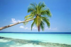 Co jeszcze można przywlec z wakacji, poza wspomnieniami?
