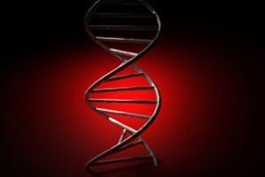 Rejestracja leku w przerzutowym raku szyjki macicy