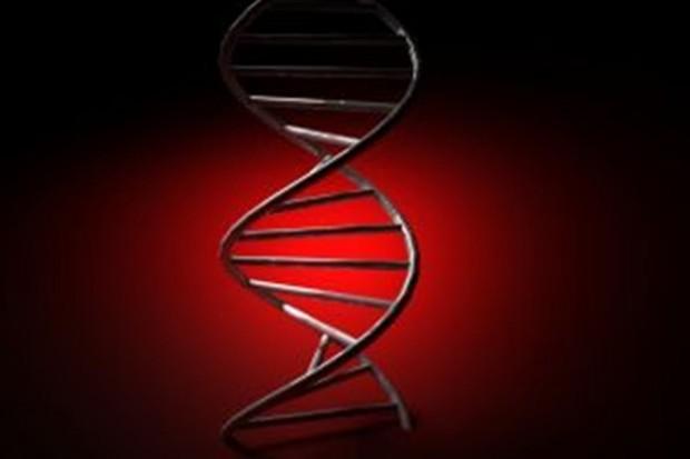Nobel za przełomowe odkrycie w dziedzinie badania DNA