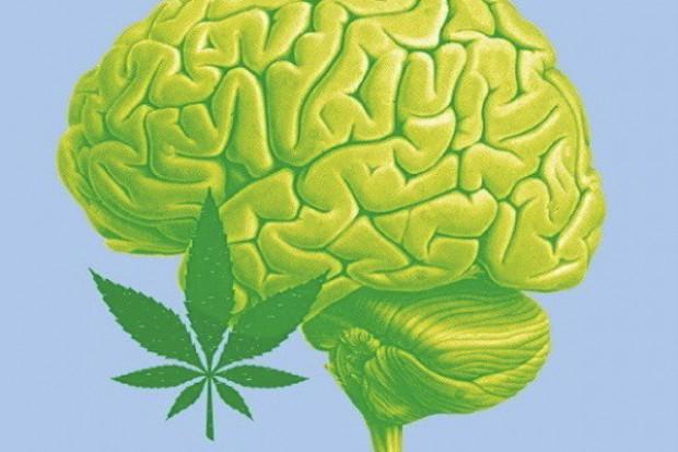 THC zawarte w marihuanie może chronić przed Alzheimerem