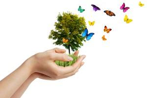 Rzeszów: Sanofi stawia na działania ekologiczne