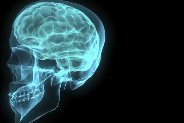 Po udarze prawa półkula mózgu może przejąć od lewej funkcje mowy