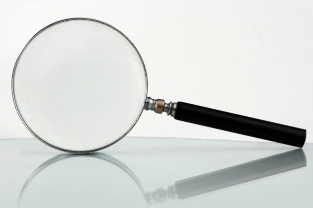 Stawki za godzinę pracy inspektora: od 500 do 900 zł