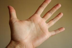 Dlaczego człowiek ma 5 palców, a nie 6