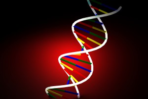 RNA w leczeniu dystrofii mięśniowej Duchenne'a