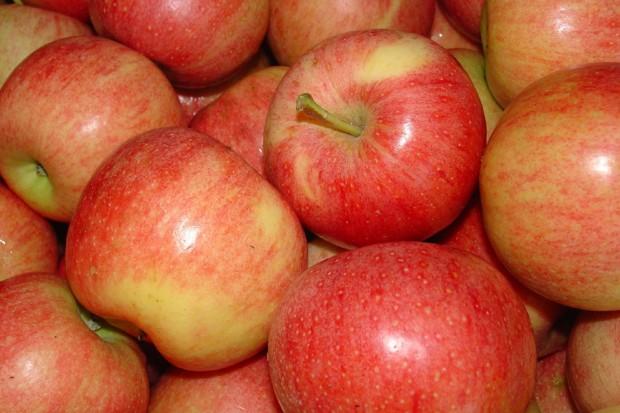 Zdrowe jak jabłka i zielona herbata