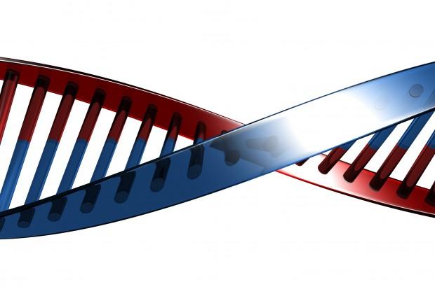 Jaki jest związek mutacji genu DIXDC1 z autyzmem?