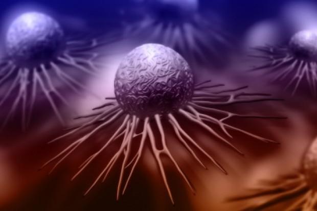 Naukowcy odkryli słaby punkt raka