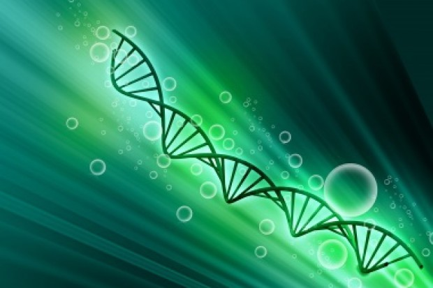 Odkrycie polskich naukowców powstrzymuje chorobę Sanfilippo