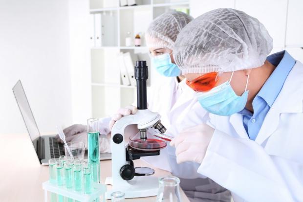 Współpraca nad identyfikacją małych cząsteczek o potencjale terapeutycznym