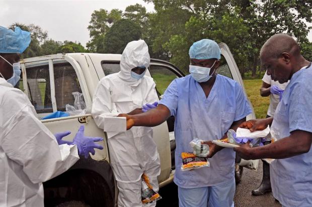 Lek na ebolę w szybkiej rejestracji