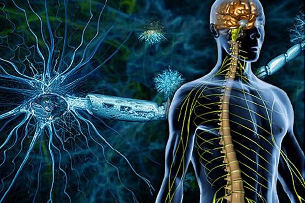Odkrycie na UW może pomóc w leczeniu SM