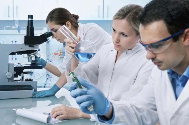 Wyhodowane ze skóry minimózgi do testowania leków