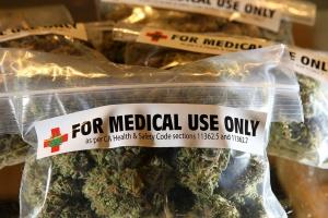 Pikieta przed CZD: Dołecki przekazał marihuanę medyczną chorym