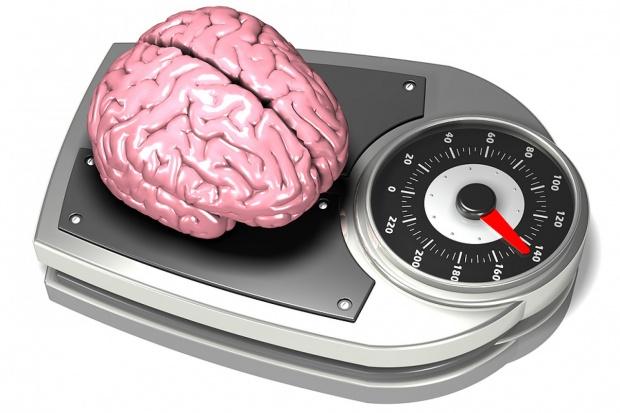 Mniejszy mózg trzylatków związany z genem współodpowiedzialnym za alzheimera
