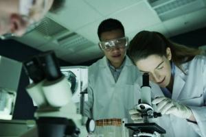 Naukowcy pracują nad kolejną terapią w SM