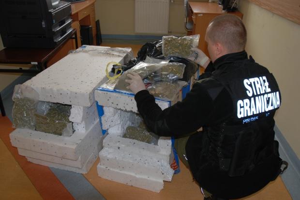 Morski Oddział SG w Gdańsku przejął 17 kg marihuany
