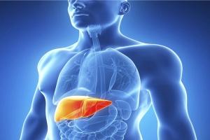 Najczęstszym wskazaniem do przeszczepu wątroby są powikłania HCV i HBV