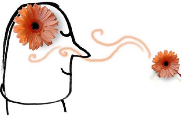 Utrata węchu może zwiastować alzheimera