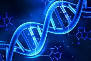 Naukowcy chcą nam wydłużyć życie do 120 lat....