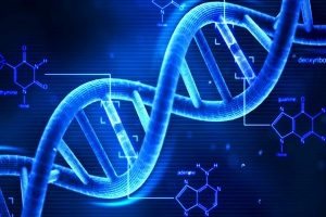 DNA jest spoiwem kamieni żółciowych