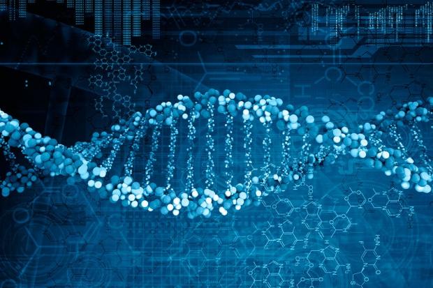 Polsko-szwedzka współpraca przy analizie DNA kopalnych