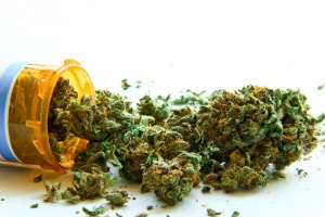 Badanie: marihuana jest bezpieczna w leczeniu bólu