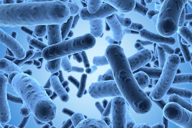 Glinka skuteczna jak antybiotyki