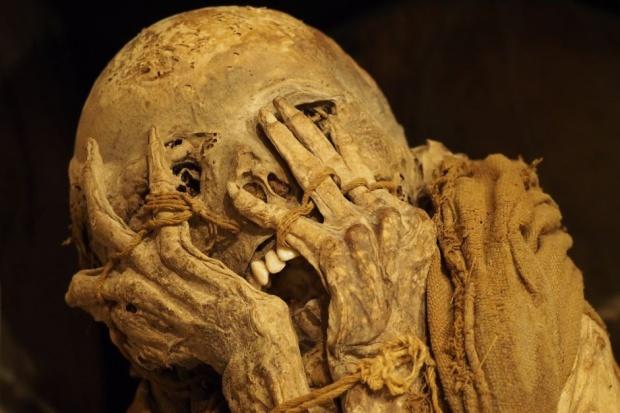 Osiemnastowieczna mumia miała raka jelita grubego