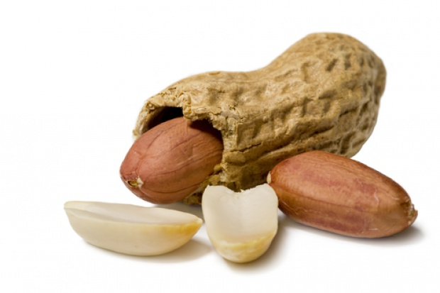 Orzeszki ziemne lekiem na alergię?