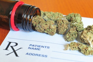 Firma liczy, że jako pierwsza zarejestruje susz z marihuany