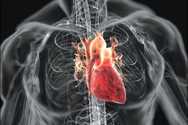 Biomarkery wykryją niewydolność serca