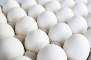 MRiRW namierzyło fermę z zakażonymi salmonellą jajami