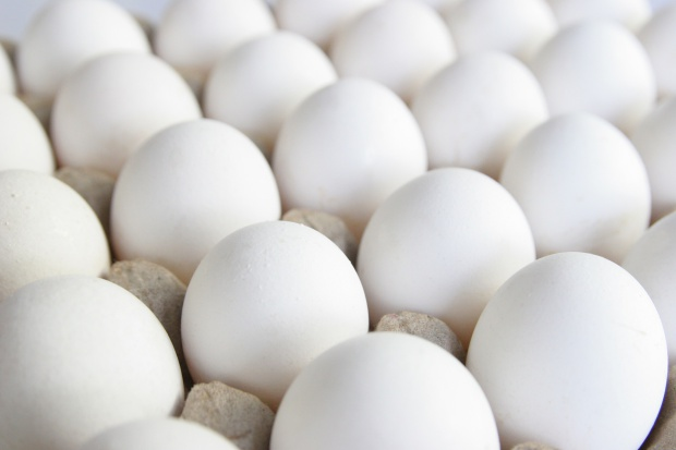Polskie jajka z salmonellą trafiły na stoły Europy?