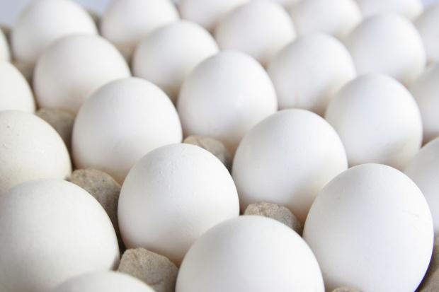 Japonia: kurze jaja z interferonem