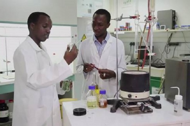 Burkina Faso: pracują nad mydłem odstraszającym komary