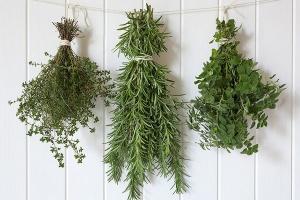 Leki ziołowe bez rejestracji bierze się na własne ryzyko