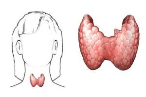 MZ: będzie więcej leków refundowanych na raka tarczycy