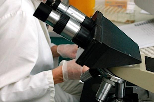 Kraków: naukowcy pracują nad nietoksycznymi nośnikami leków