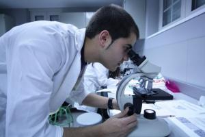 Badania: komórki w jelitach mogą zahamować rozwój Parkinsona?