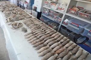 Turcja: odkryto starożytne leki na serce i melancholię