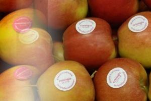 NFZ: owocowa profilaktyka w Białymstoku