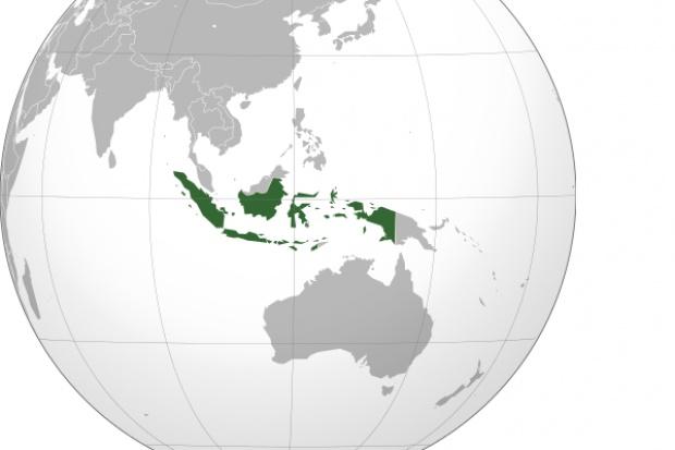 Indonezja: zgony po ziołowej miksturze znachora