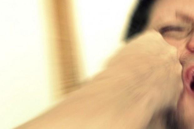 Na skłonność do agresji kobiet i mężczyzn wpływają dwa różne hormony