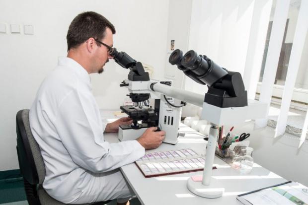 Projekt rozporządzenia ws. standardów badań patomorfologicznych
