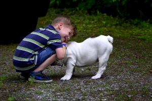 Zwierzę w domu zmniejszy ryzyko alergii i otyłości u dziecka?