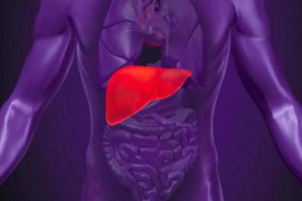 Nowy system obrazowania pomocny w niszczeniu nowotworów wątroby
