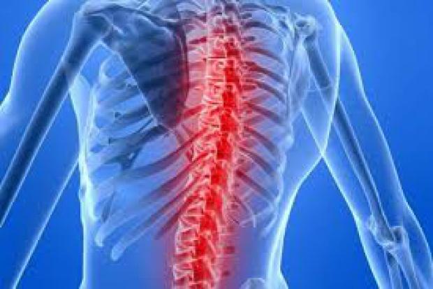 Eksperci apelują, by nie bagatelizować bólu pleców