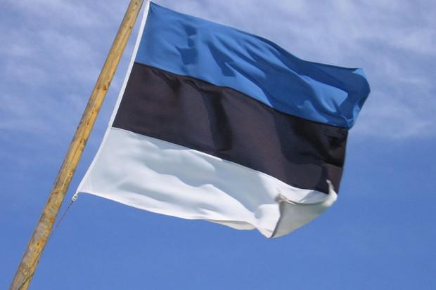 Estonia dwa lata po wprowadzeniu AdA